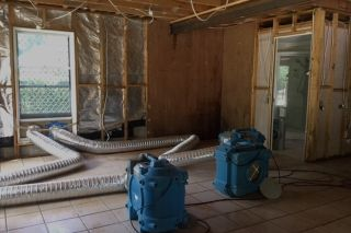 Mould Remediation in Brisbane Home