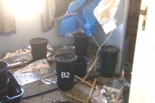 Marijuana Hydroponic Drug Lab Clean Up