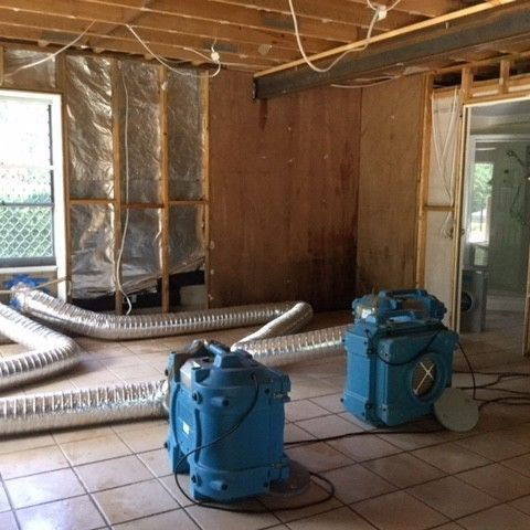 Brisbane Home Mould Remediation