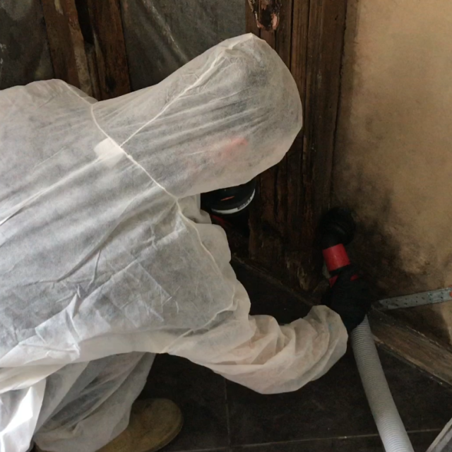 Bathroom Mould Removal