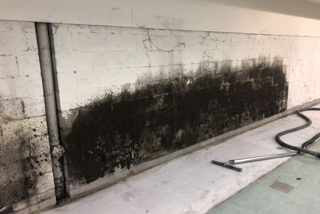 Mould growth along the wall