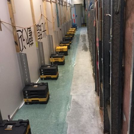 Mould Removal in Retail Shop
